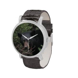 Black Bear Watch