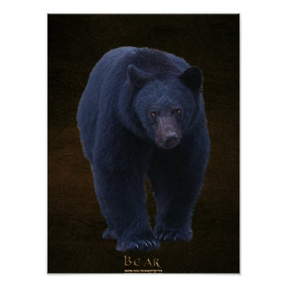 Black Bear Wildlife Art Poster w Faux-leather BG