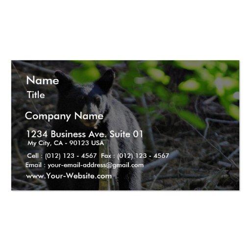 Black Bears Business Cards