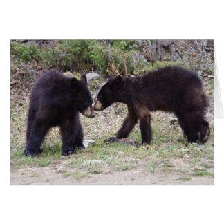 Black Bears Cubs Card