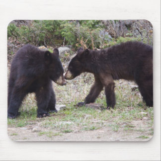 Black Bears Cubs Mouse Pad