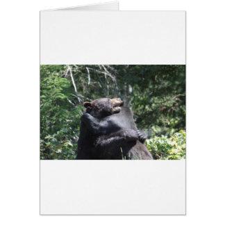 Black Bears Wrestling Card