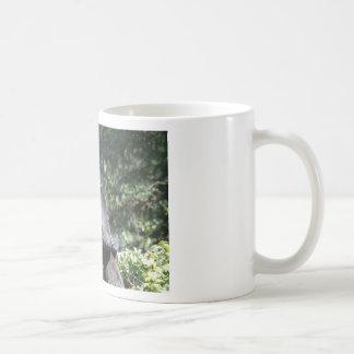 Black Bears Wrestling Coffee Mug