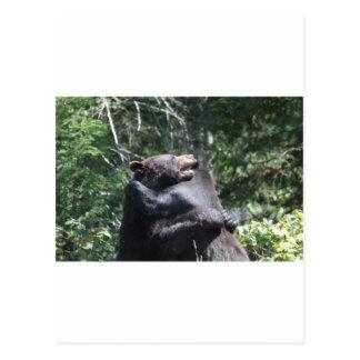 Black Bears Wrestling Postcard