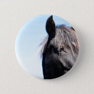 Black Beauty Button