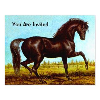 BLACK BEAUTY HORSE  BIRTHDAY PARTY INVITATION