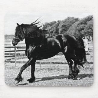 Black Beauty Horse Mouse Pad