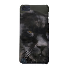 Black Beauty iPod Touch 5G Cover at Zazzle