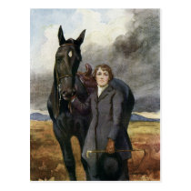 Black Beauty - She Chose Me For Her Horse Postcard