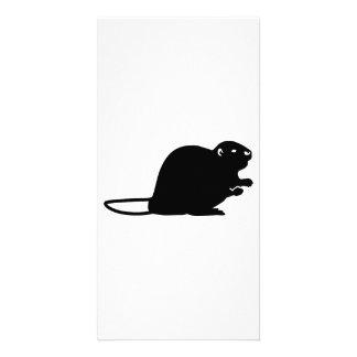 Black beaver photo card