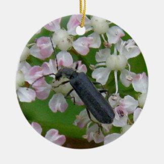 Black Beetle on Angelica Ceramic Ornament