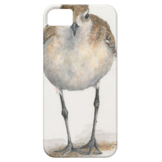 Black-bellied Plover iPhone Case--CaseMate iPhone 5 Cases