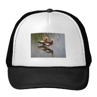 Black-bellied Whistling Duck Trucker Hat