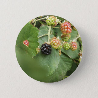 Black berry design pinback button