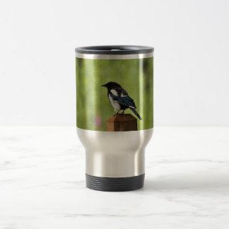 Black-billed magpie mugs