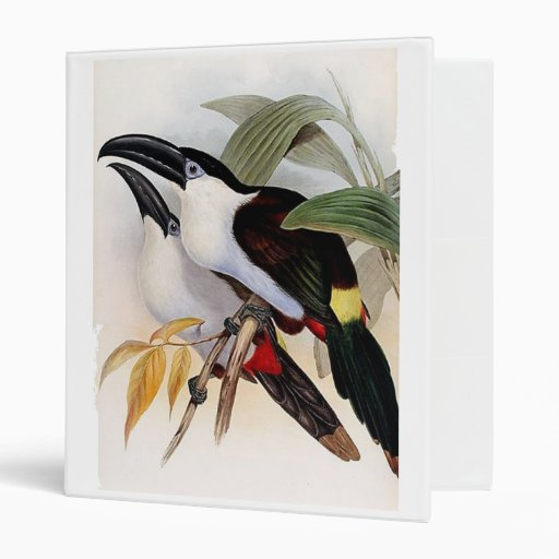 Black-billed Mountain Toucan Vinyl Binder