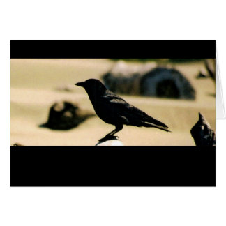 Black Bird - Card