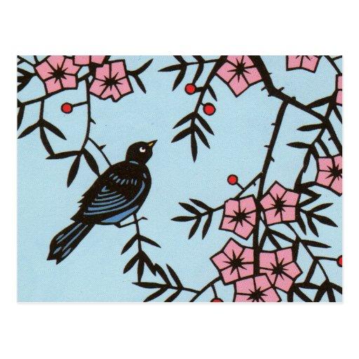 Black Bird Cherry Blossom Tree Postcards