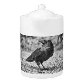 Black bird, crow, on the rocks teapot