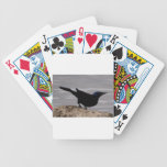 Black Bird Deck Of Cards