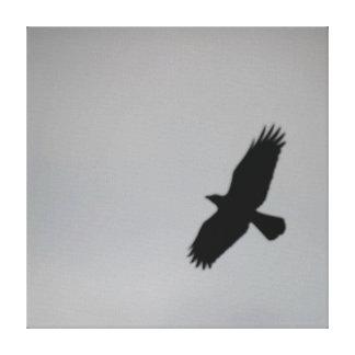 Black Bird in a Darkened Sky Canvas Print
