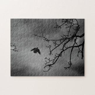 Black Bird Night Sky Puzzles
