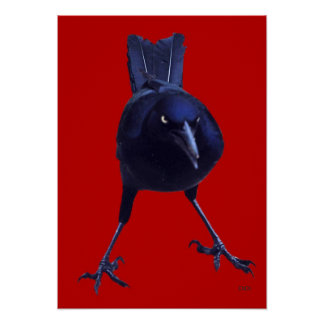 Black Bird On Red Poster