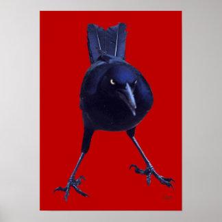 Black Bird On Red Poster