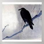 Black bird raven antique art poster