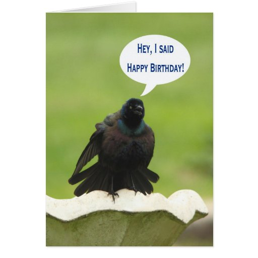 happy holidays greeting card with bird   outfiters us