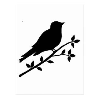 Black Bird Silhouette Postcard