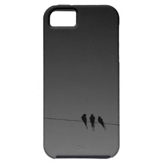 Black Birds on a Wire Night iPhone 5 Cases