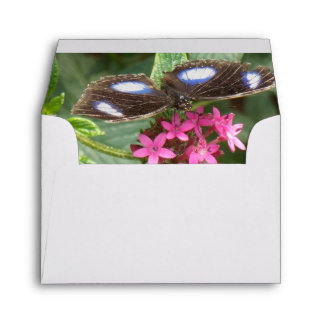 Black Blue Butterfly Pink Fower Envelopes