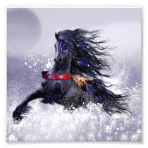 Black Blue Majestic Stallion Indian Horse in Snow Photo Print