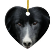 Black Border Collie Face Dog Ornament