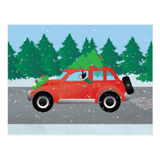 Black Boston Terrier Driving Christmas Car Postcard