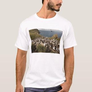 Black-browed Albatross, Thalassarche T-Shirt