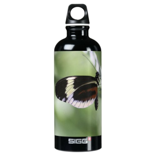 Black Brown and White Butterfly Aluminum Water Bottle