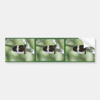 Black Brown and White Butterfly Car Bumper Sticker
