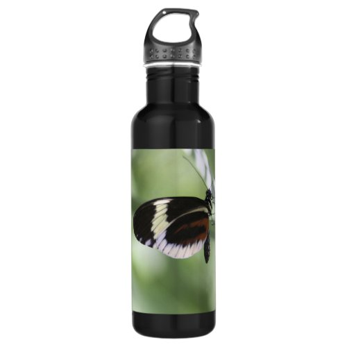 Black Brown and White Butterfly Water Bottle