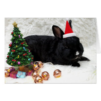 Black Bunny Christmas Card