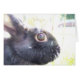 Black Bunny Greeting Card