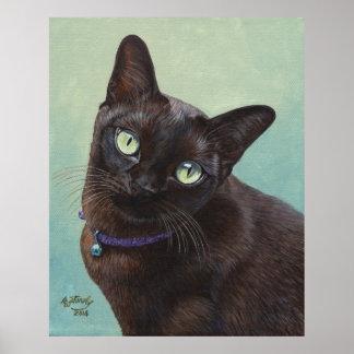 Black Burmese Cat Moose Poster