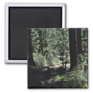 Black Butte Trail 2 Inch Square Magnet