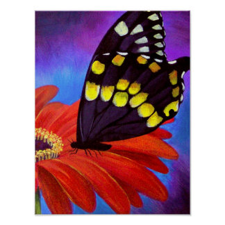 Black Butterfly Daisy Painting - Multi Poster