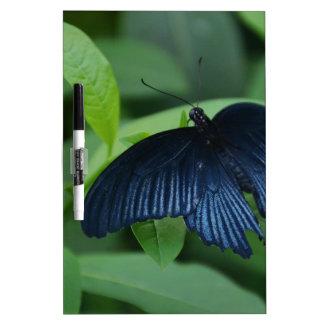 Black Butterfly Dry-Erase Board