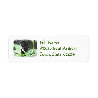 Black Butterfly Mailing Label Return Address Label