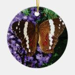 Black Butterfly on Heliotrope Ornaments