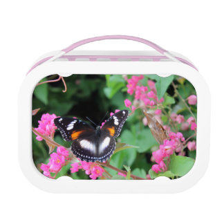 Black butterfly on pink flowers lunch box