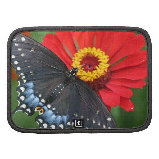 Black Butterfly on Red Zinnia Mini Folio Planner